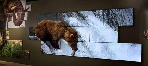 National Geographic Video Wall