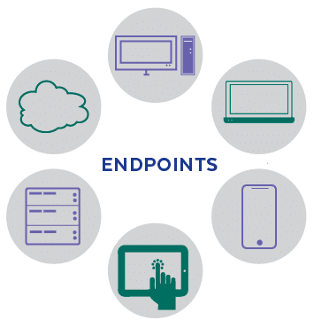 Endpoint Devices